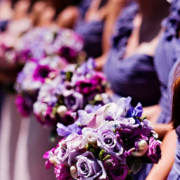 bouquet color glicine