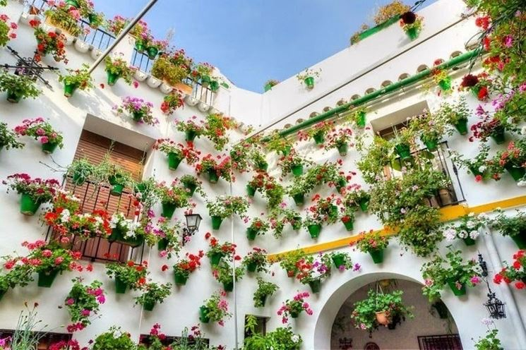 Fiori per balconi - Fiorista - Fiori per balconi - fiori