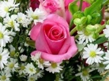 fiori misti