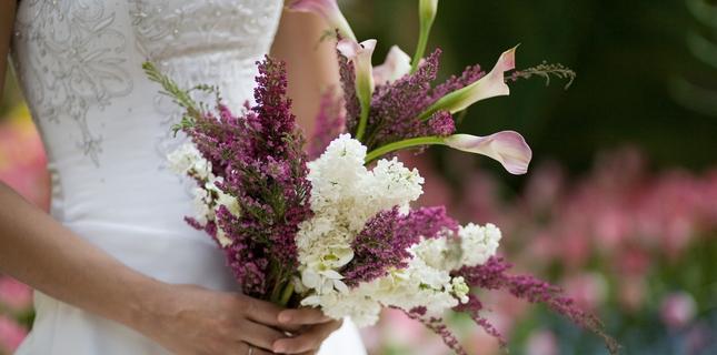 <h6>Fiori matrimonio</h6>Parleremo dei fiori pi� adatti da regalare ad un matrimonio, delle specie migliori e del loro significato