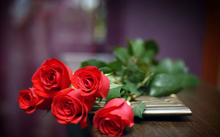 Conosciuto Mazzo di fiori - regalare fiori - Quando regalare mazzi di fiori RR43