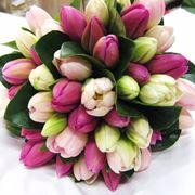 mazzi fiori