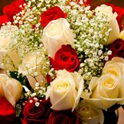 fiori di compleanno