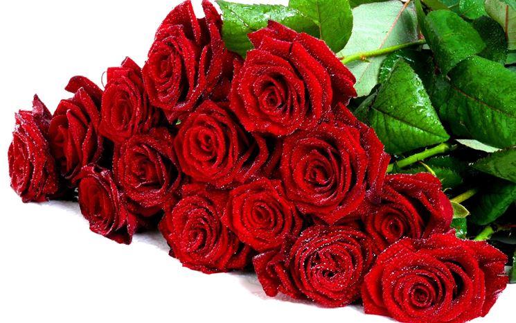 Super Mazzo di rose - regalare fiori - Regalare un mazzo di rose MY05