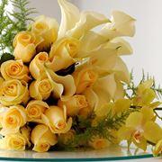 """fiore di centaurea"""
