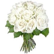 rosa bianca significato
