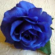 rosa blu significato