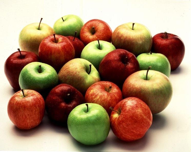 Diverse varietà di mele