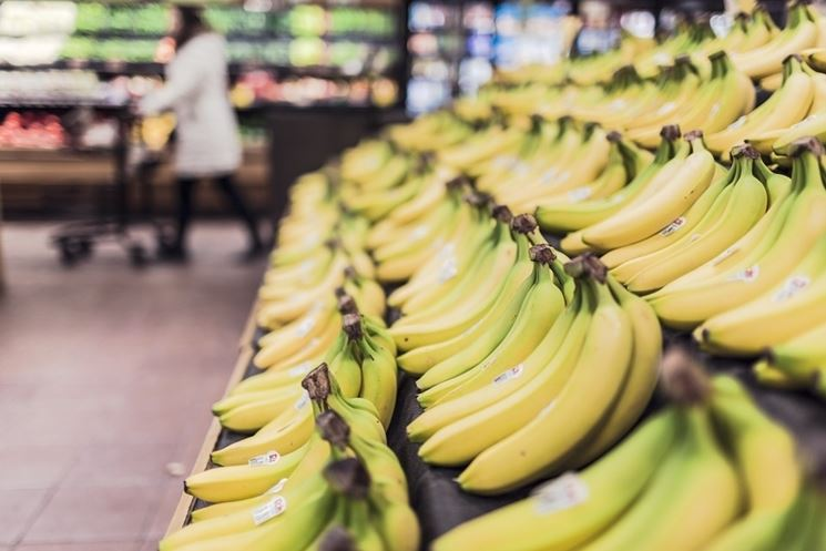 Frutti maturi banano
