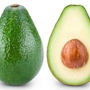 Avocado piante da frutto caratteristiche dell 39 avocado for Avocado coltivazione