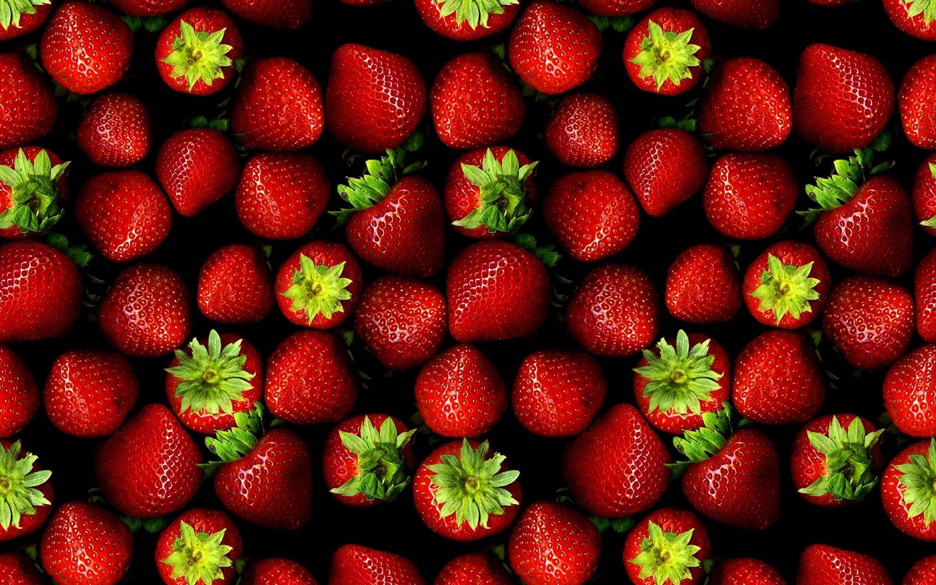 Condizioni favorevoli alla coltivazione delle fragole