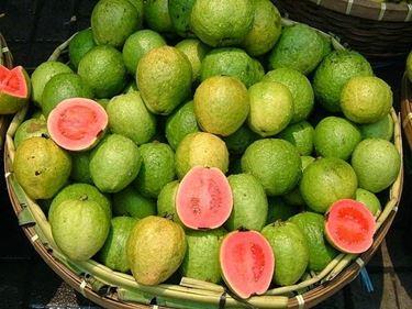 Frutti di guava