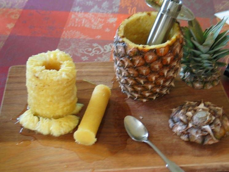 Gambo dell'ananas