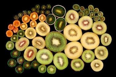 Diverse varietà di Kiwi