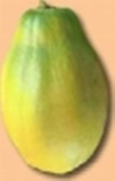 frutti esotici1