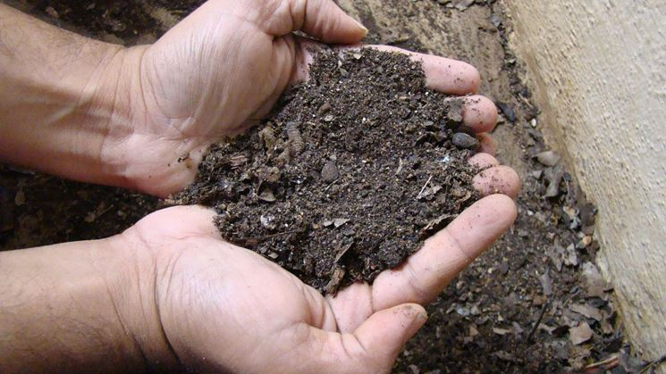 Concime naturale organico