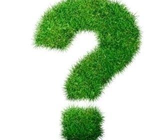 domande e risposte giardinaggio