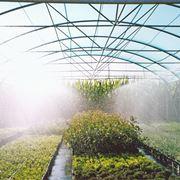 nebulizzatori per piante