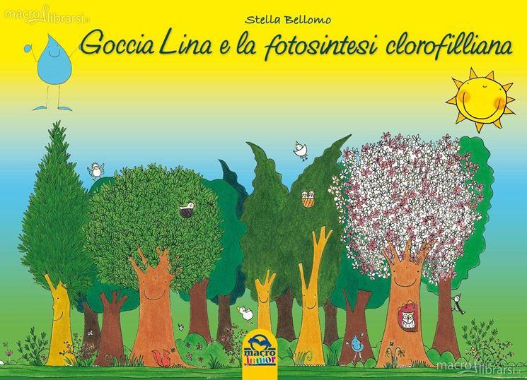 Un libro per bambini sulla fotosintesi clorofilliana