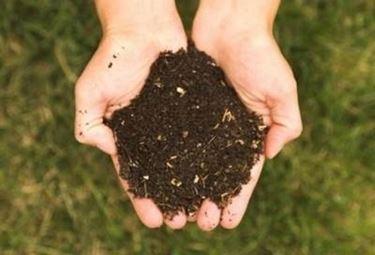 fertilizzanteorganico1_zpsb232a0e8