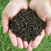 Fertilizzante chimico