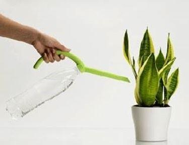 fertilizzantiperpiante