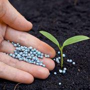Principali nutrienti terreno