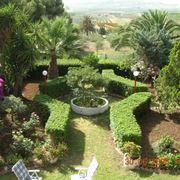 Bellissimo giardino curato