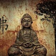 Buddha, il fondatore dello zen