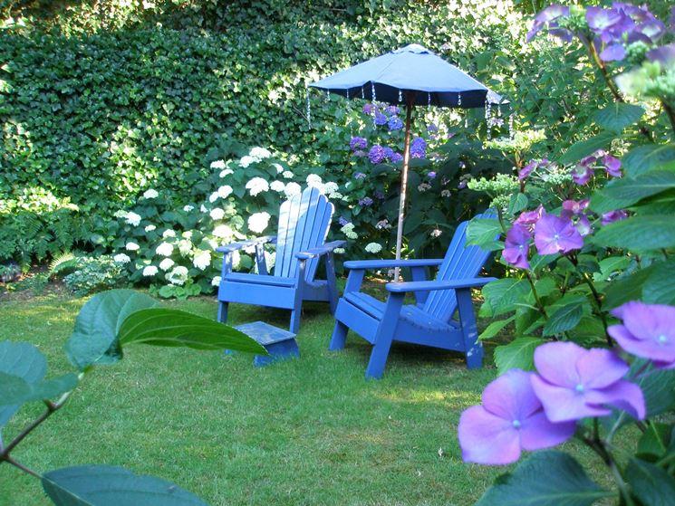 Roof garden con ortensie