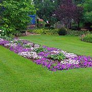 giardini in fiore