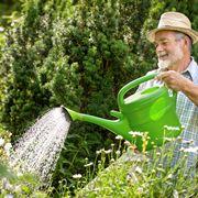 Un giardiniere al lavoro