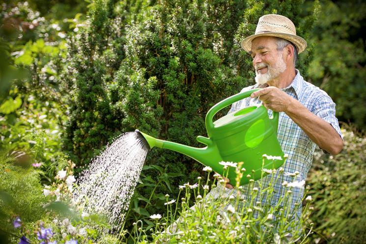 giardiniere giardinaggio come scegliere il giardiniere ForDonare Un Giardiniere