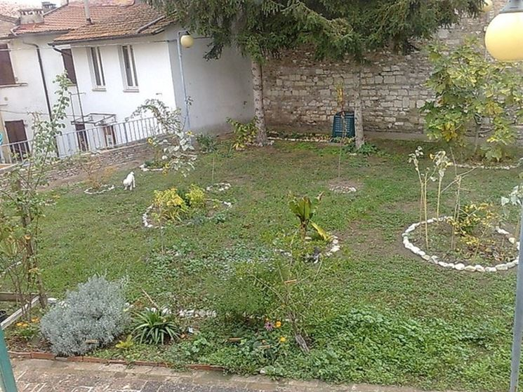 Manutenzione del giardino giardinaggio manutenzione for Prato senza manutenzione