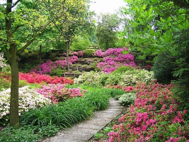 giardino in primavera-estate