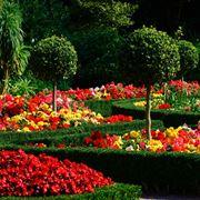 Un giardino ben curato