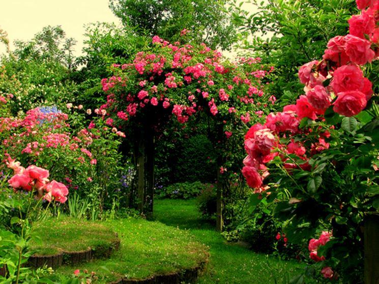manutenzione giardini giardinaggio come tenere in