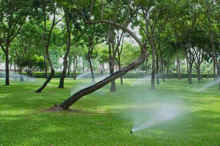 Impianto irrigazione giardino - impianto irrigazione - Realizzare un impianto...
