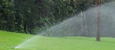 Degli irrigatori da giardino