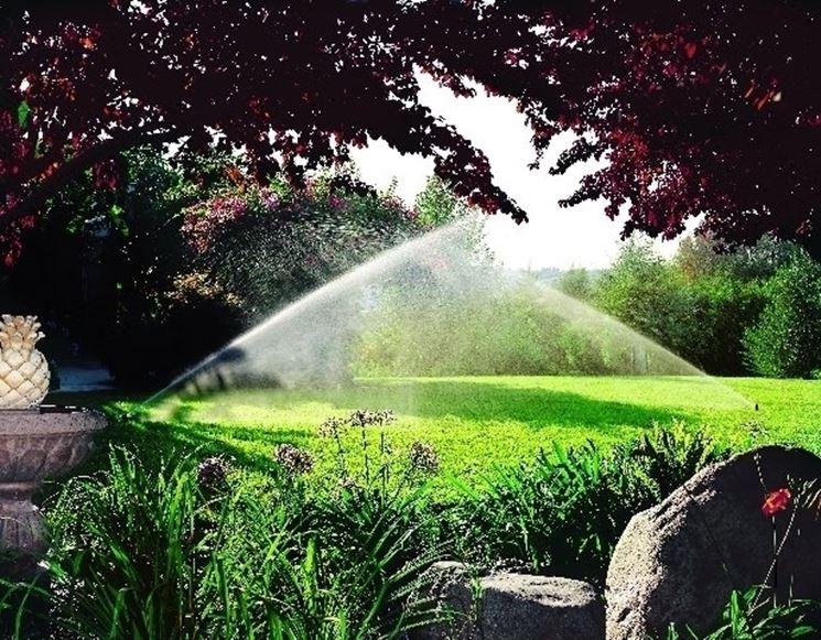 Degli irrigatori in azione