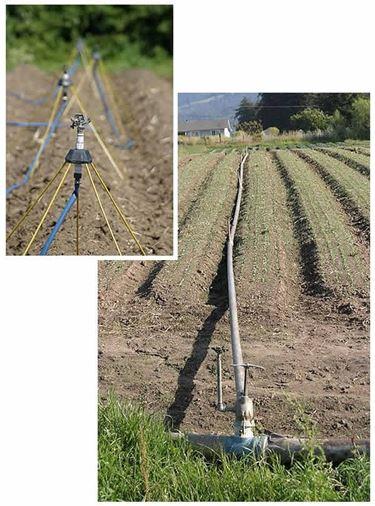 Impianti di irrigazione fuori terra.