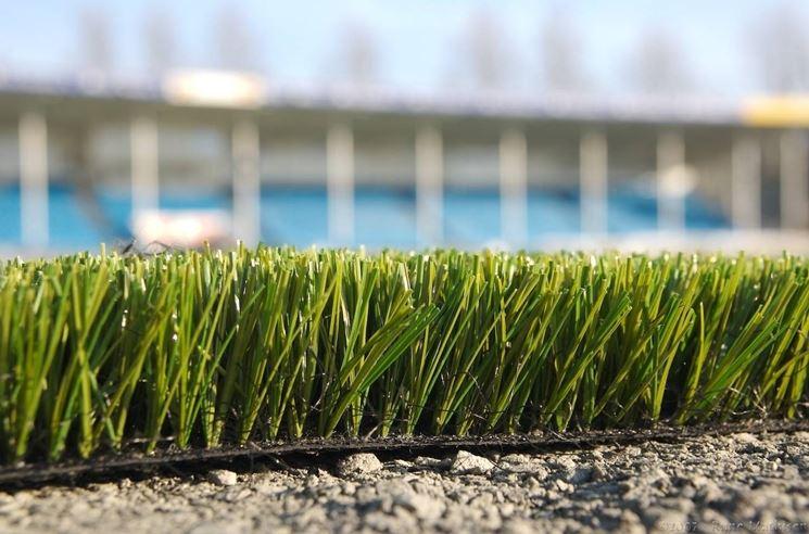 Particolare di erba sinetica