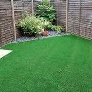 finta erba