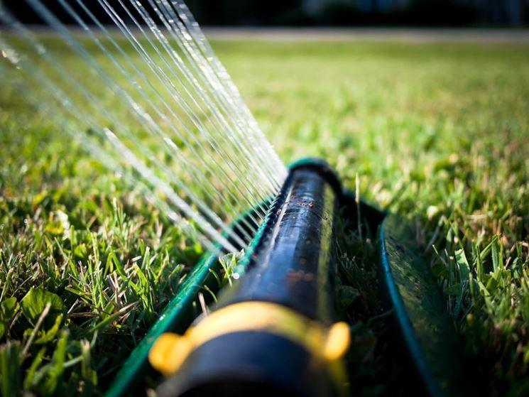 prato irrigazione
