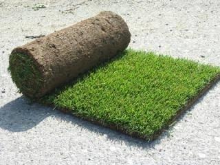Casa immobiliare accessori tappeto erboso rotoli for Tappeto erboso prezzi
