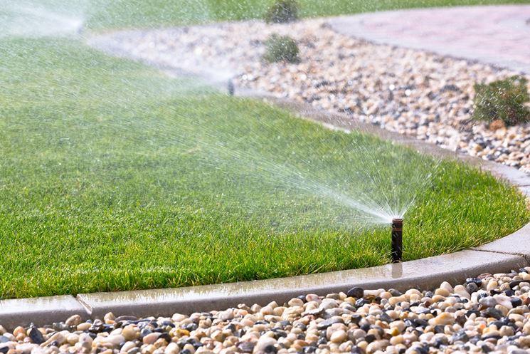 tappeto erboso irrigazione