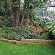aiuola giardino casa