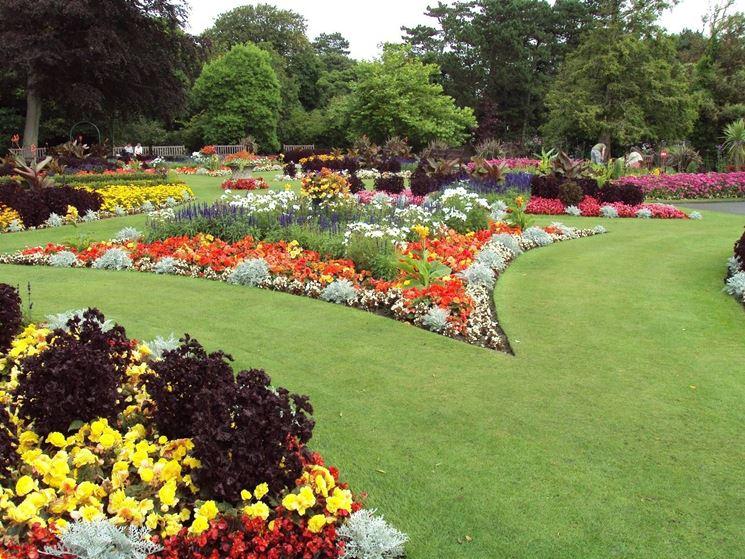 aiuola fiorita giardino