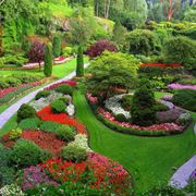 Grande giardino fiorito