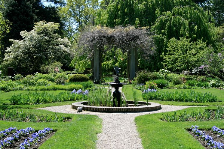 Costruzione giardini progettazione giardini come - Alberi bassi da giardino ...